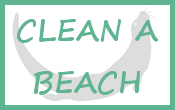 homepage_button_beach_cleaning