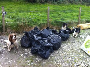Rubbish gathered at Knock beach clean with canine helpers